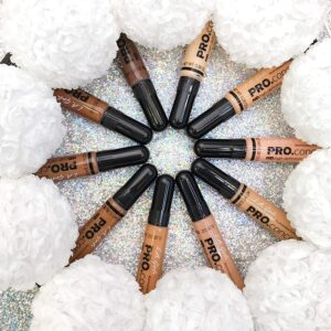 Corrector PRO Conceal High Definition